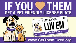 100 Of Your Donation Used To Help The Animals You Can Still Mail Us At Marshall County Humane Society PO Box 22 Plymouth IN 46563